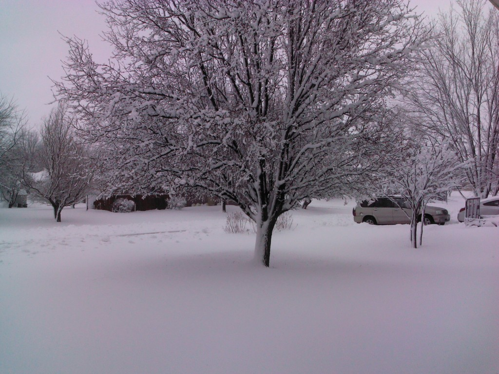 Snowstorm_02262013_tablet-2